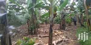 Land In Mukono For Sale | Land & Plots For Sale for sale in Central Region, Kampala