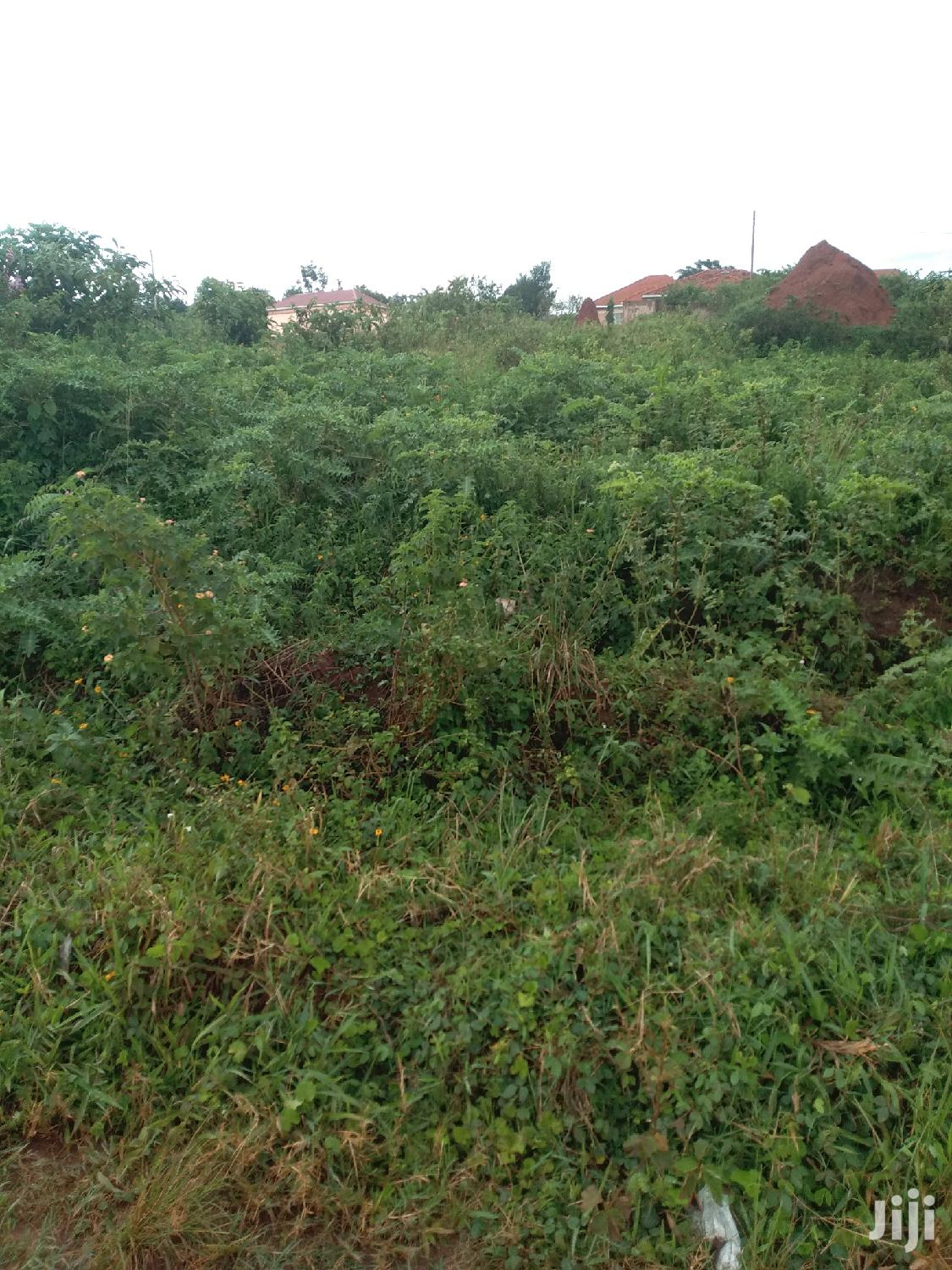 Mukono Titled Plots With a Payment Plan of One Year Power and Water