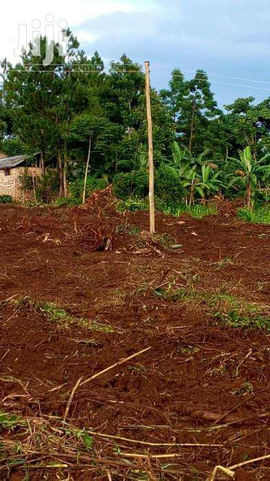 Land In Mukono Wantoni For Sale