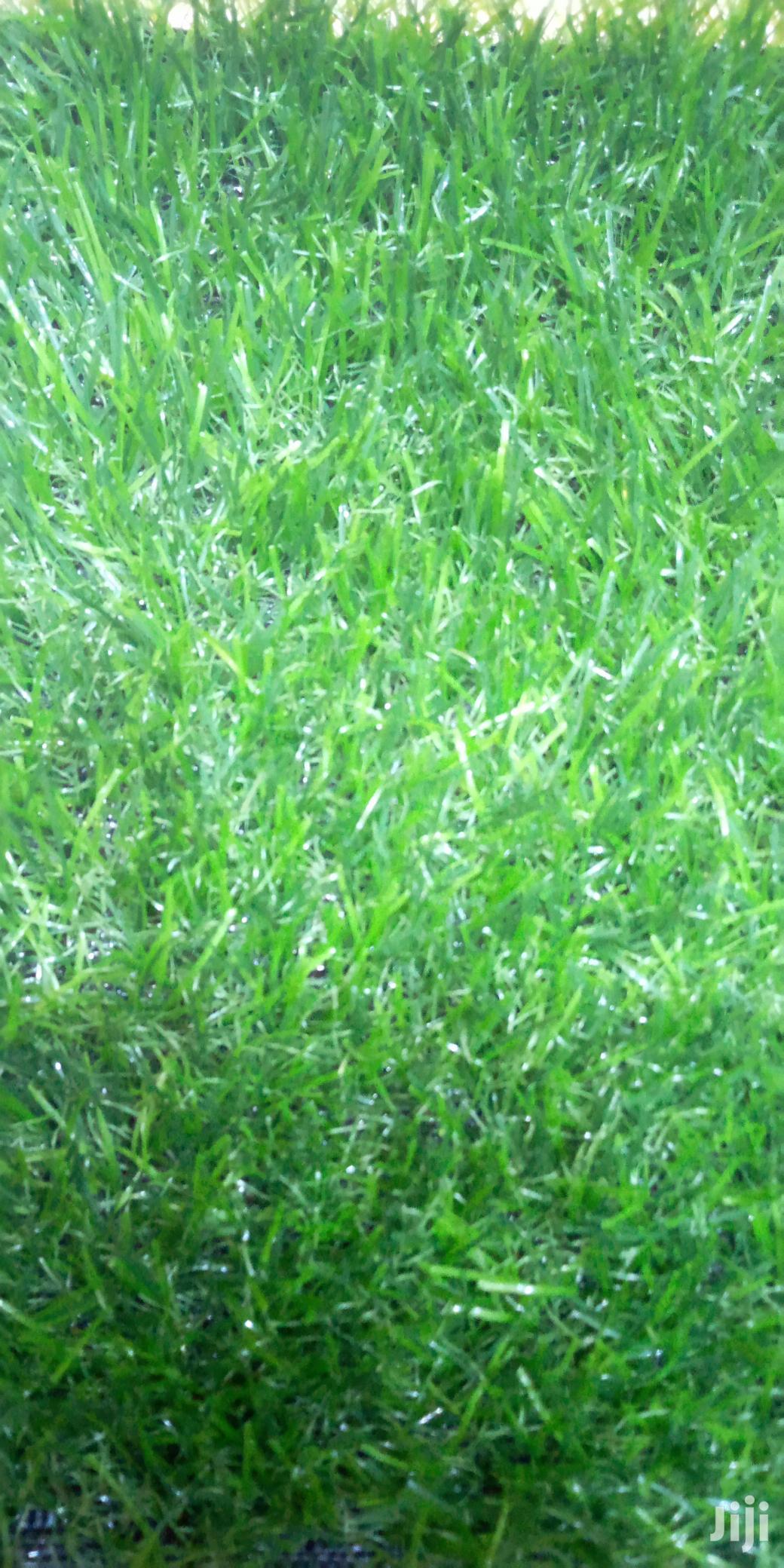 Modern Grass Carpet