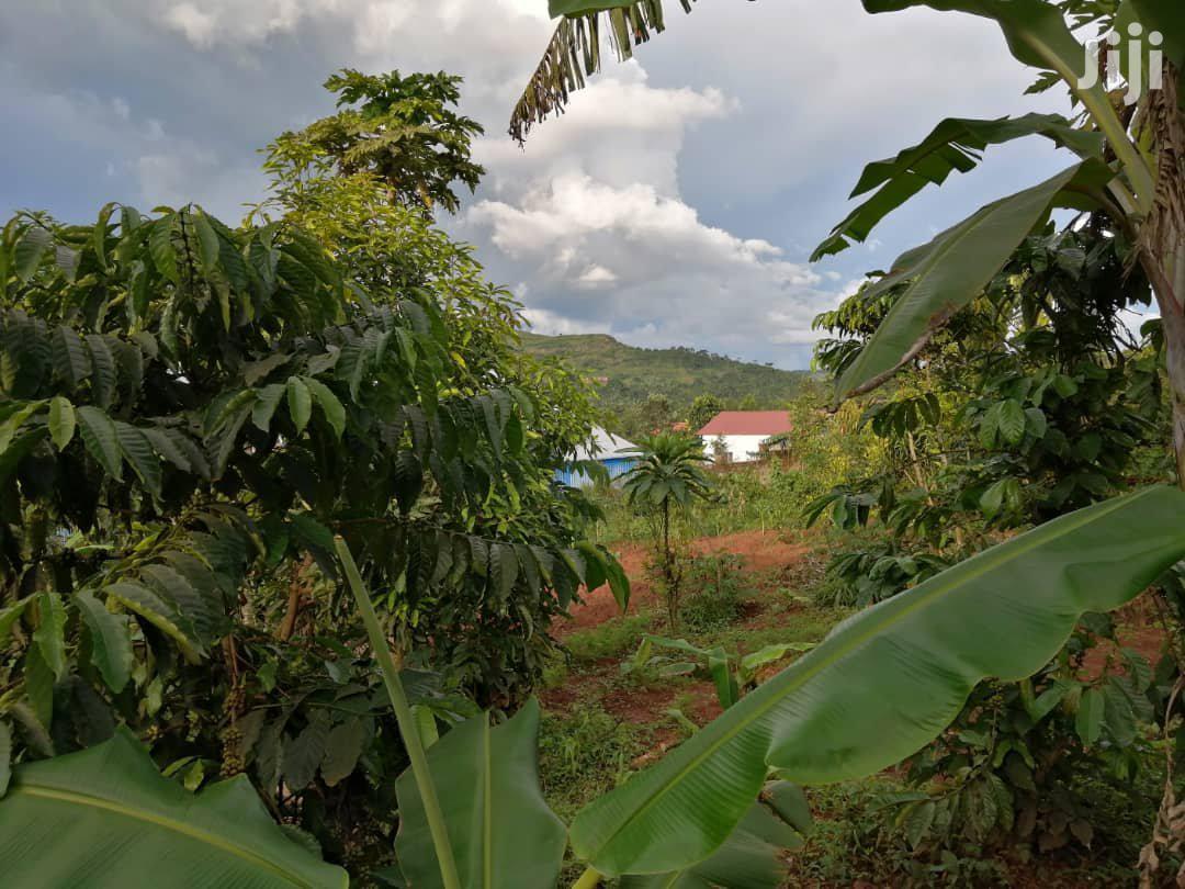 1 Acre Land In Mukono For Sale | Land & Plots For Sale for sale in Mukono, Central Region, Uganda