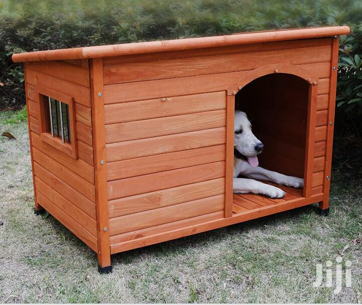 Get for Your Dog a Nice Kennel
