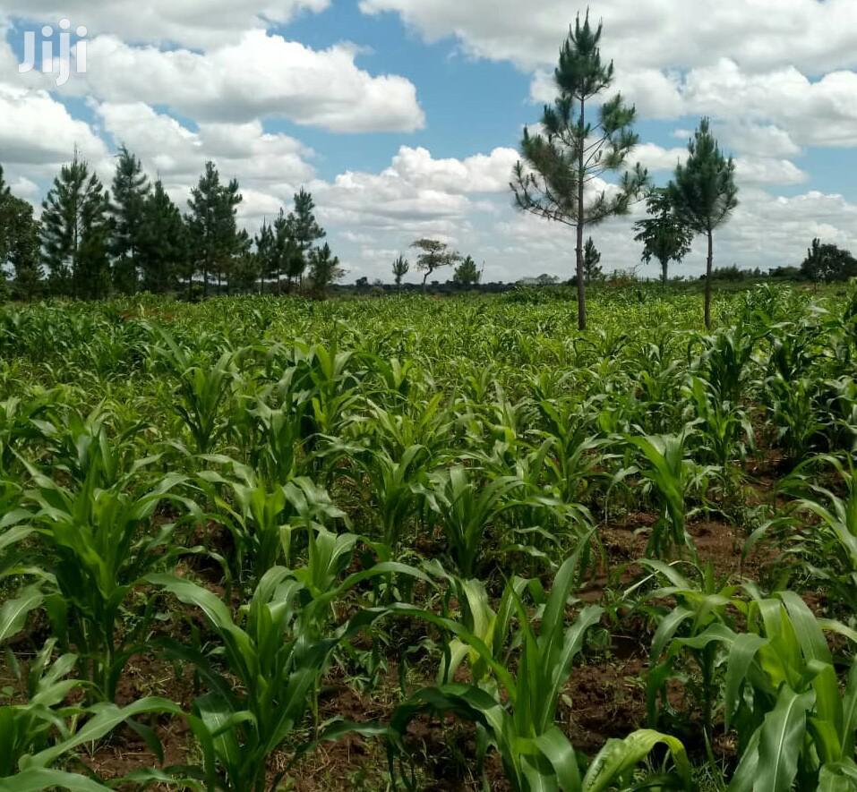 3 Acres Of Land In Gayaza Zirobwe For Sale
