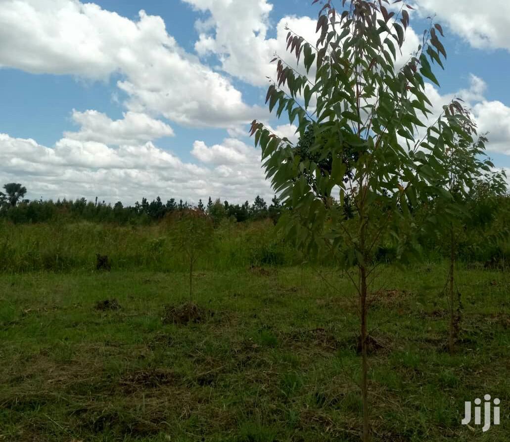 30 Acres of Farm Land in Gayaza Zirobwe for Sale