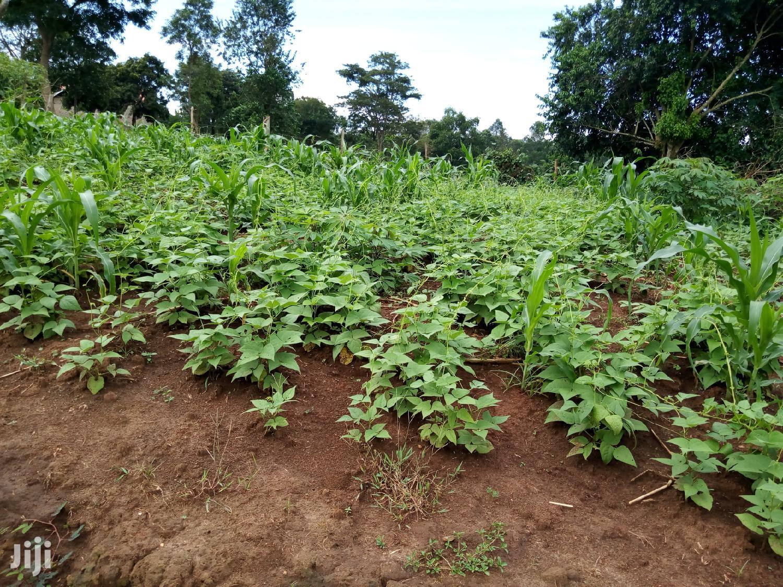 Plot for Sale in Kisaasi | Land & Plots For Sale for sale in Kampala, Central Region, Uganda