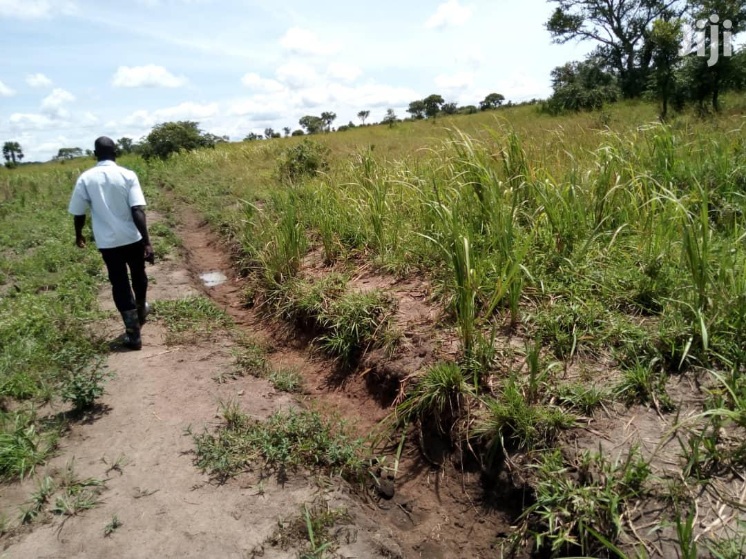 Land In Anaka For Sale | Land & Plots For Sale for sale in Gulu, Nothern Region, Uganda