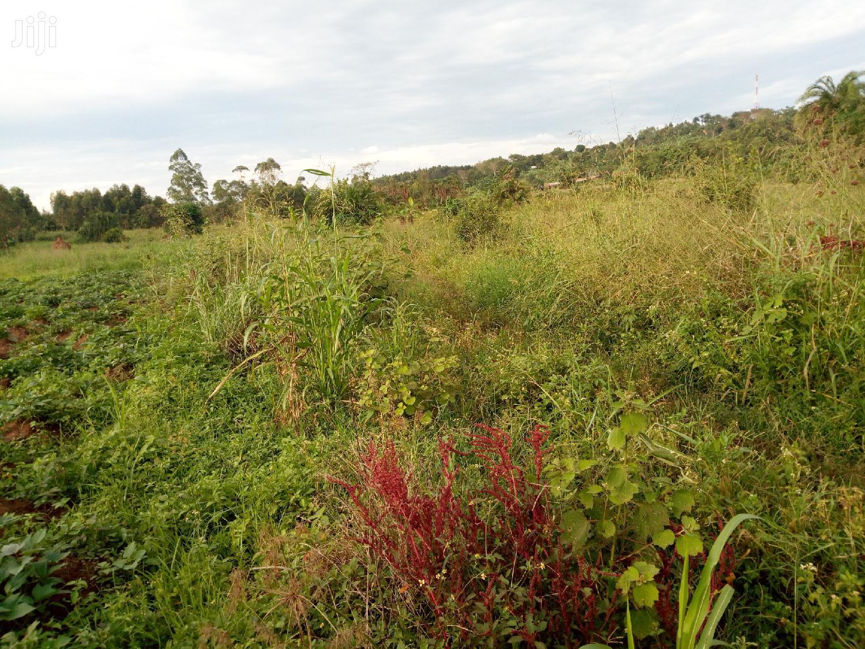 Archive: Land For Sale In Gayaza-majije 15 Decimals