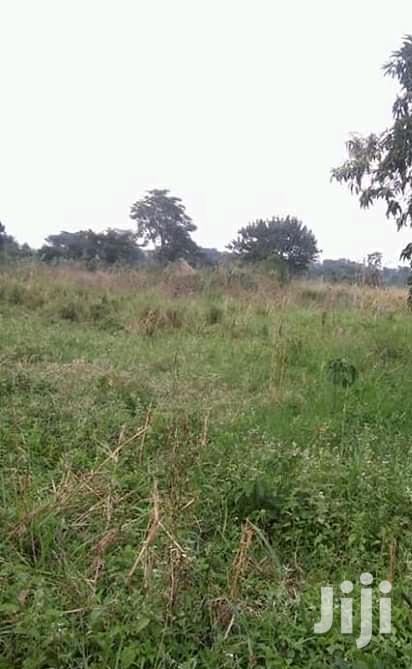 Archive: Land for Sale 250 Acres
