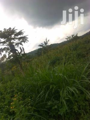 Hot Land In Nakasongola Kalungi For Sale