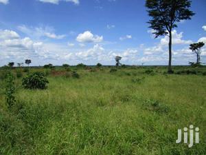 650 Acre Fertile Flat Land for Sale in Kayunga | Land & Plots For Sale for sale in Central Region, Kayunga