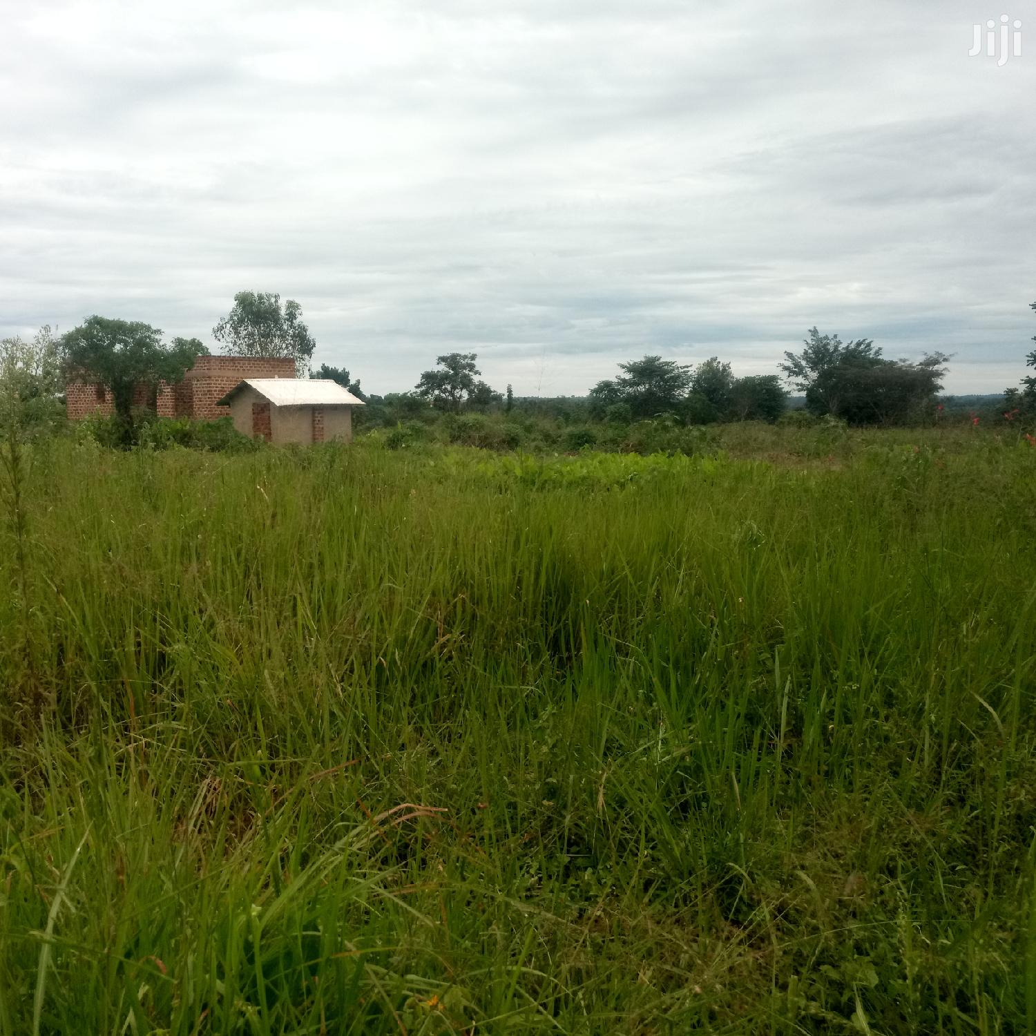 Archive: Plot of Land in Gayaza for Sale