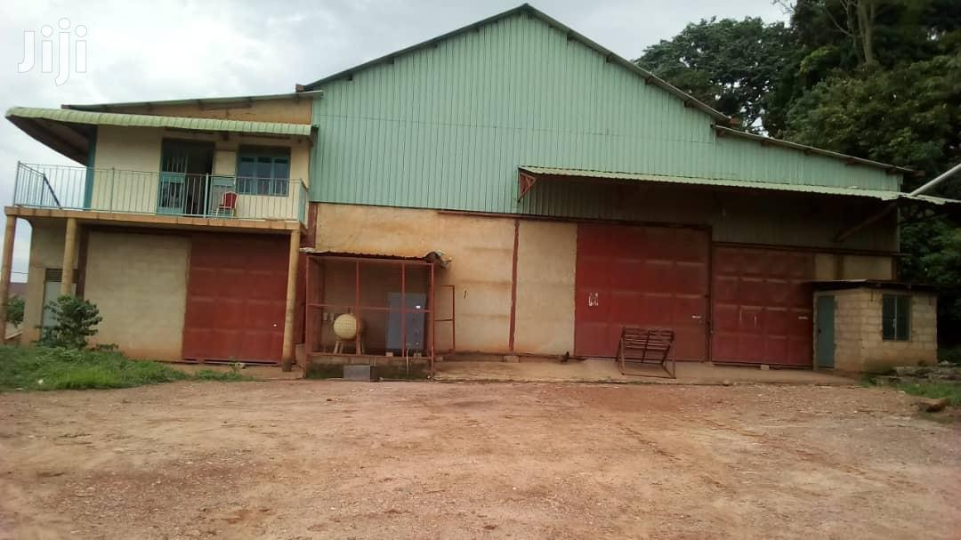 Coffee Factory | Commercial Property For Sale for sale in Kampala, Central Region, Uganda