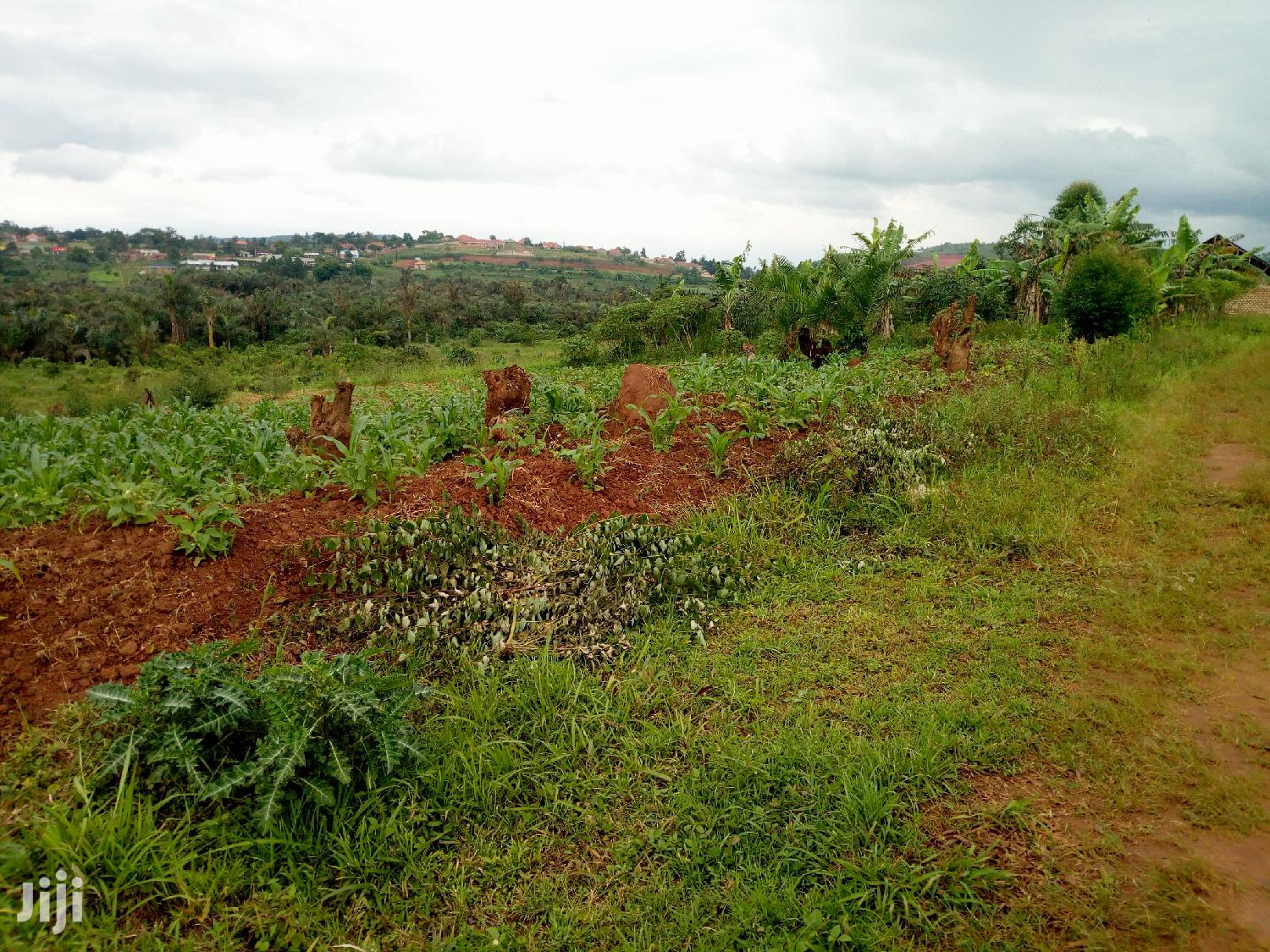 Archive: 12 Decimals of Land for Sale in Namugongo-Sonde