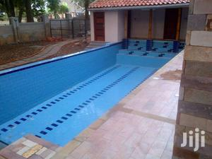 Swimming Pool Cleaning RSI 76   Automotive Services for sale in Central Region, Kampala
