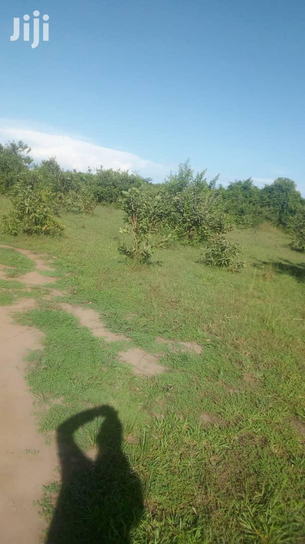A New Estate at 35 Plots in Munyonyo Measuring 13decimals and Over | Land & Plots For Sale for sale in Kampala, Central Region, Uganda