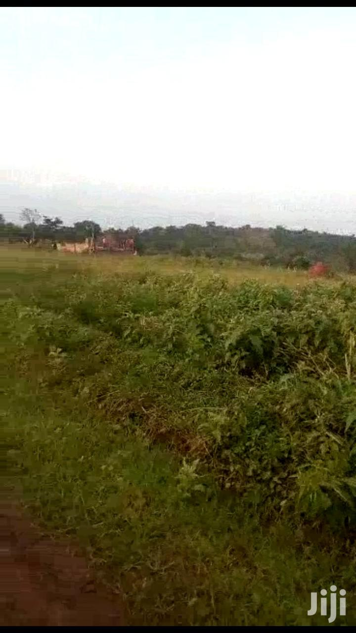 Land In Mityana Road For Sale