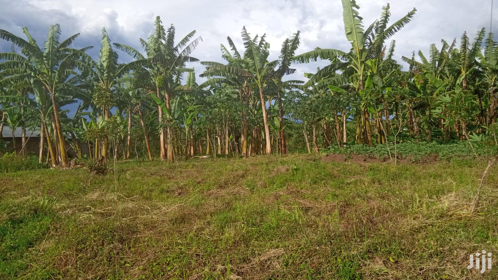 Archive: 1 Acre Land on Sale