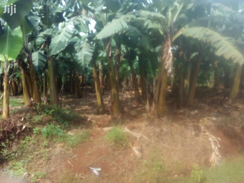 4 Acres Land In Namulanda For Sale | Land & Plots For Sale for sale in Wakiso, Central Region, Uganda