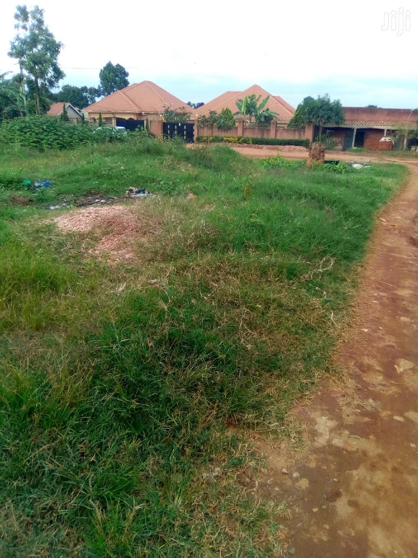 Archive: Mukono Nabuti Estate at 26m
