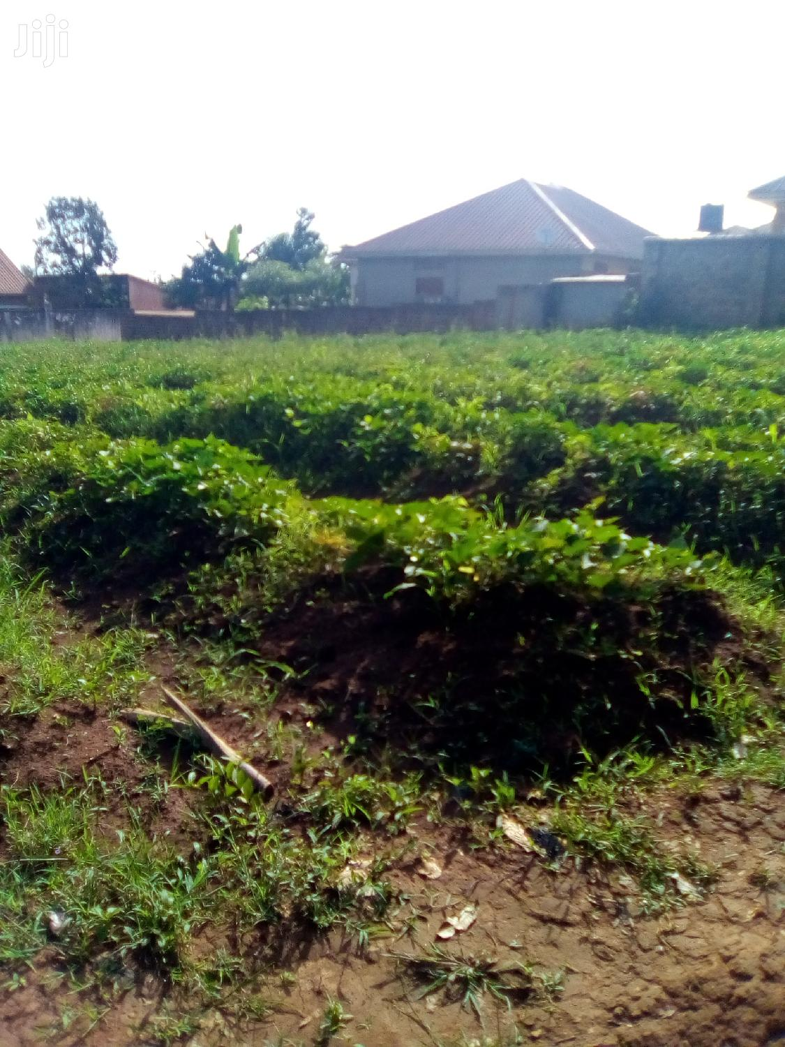 Archive: Land In Mukono Kyetume Estates For Sale