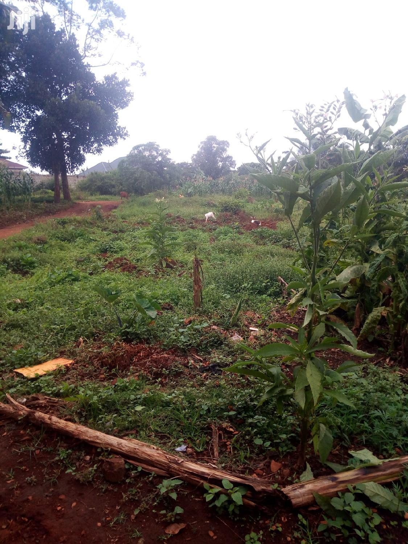 Archive: Namugongo New Estate on Sale
