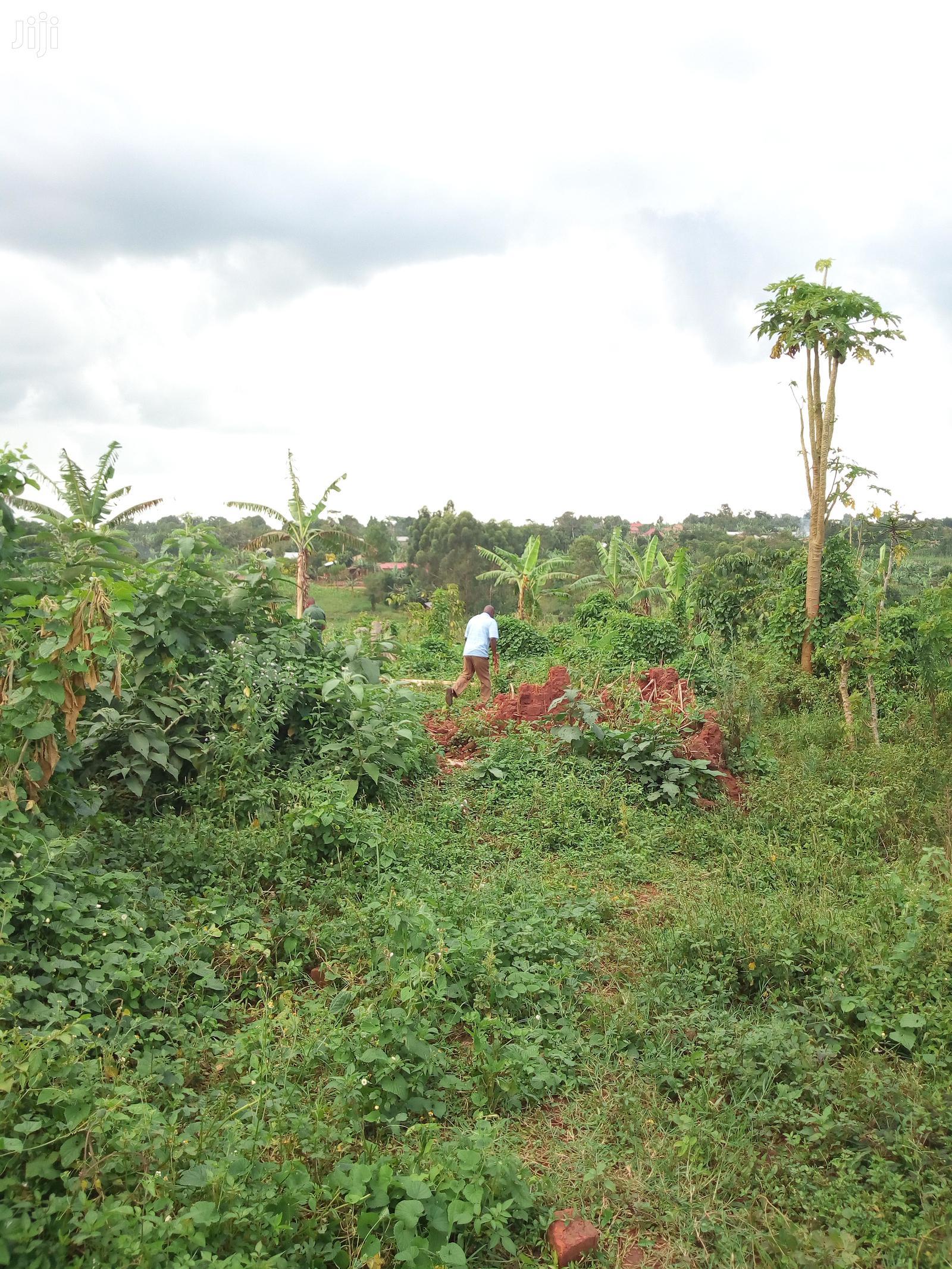 Archive: Estates Matugga Jagala Semuto Road Fo KATS DEO SURVEYS LTD