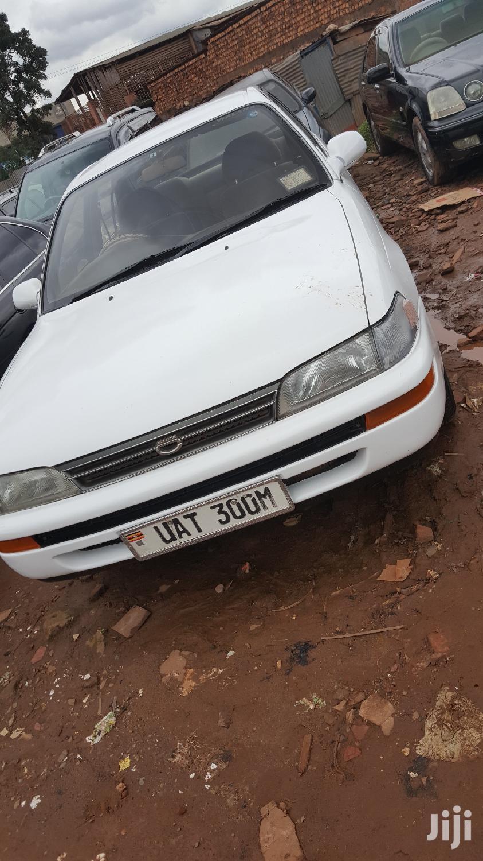 Toyota Corolla 1995 White