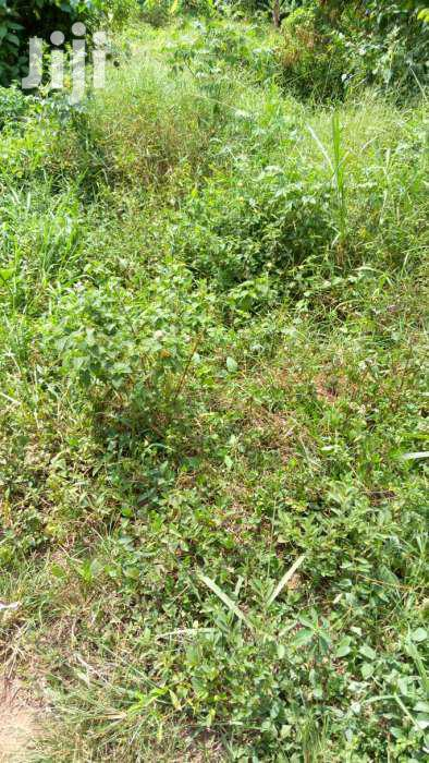 25 Decimals In Joggo Neighbouring Sonde & Seeta Town