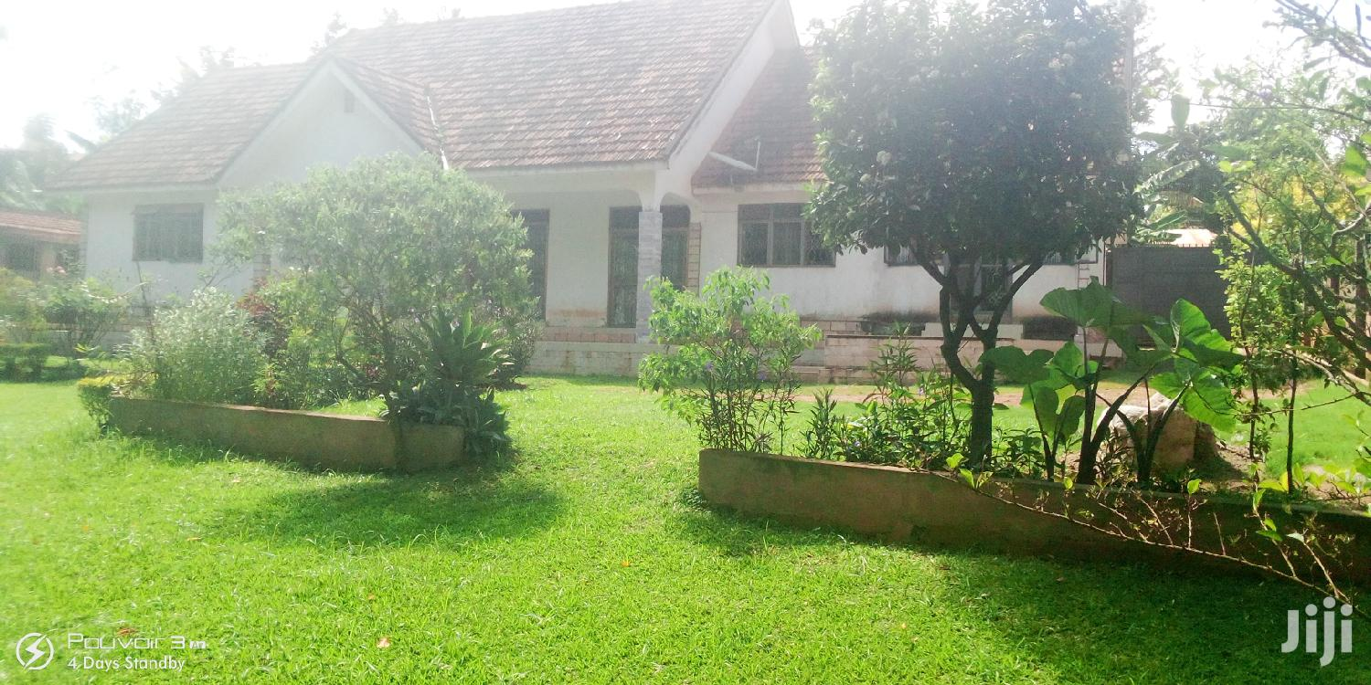 Four Bedroom House In Bukoto For Rent