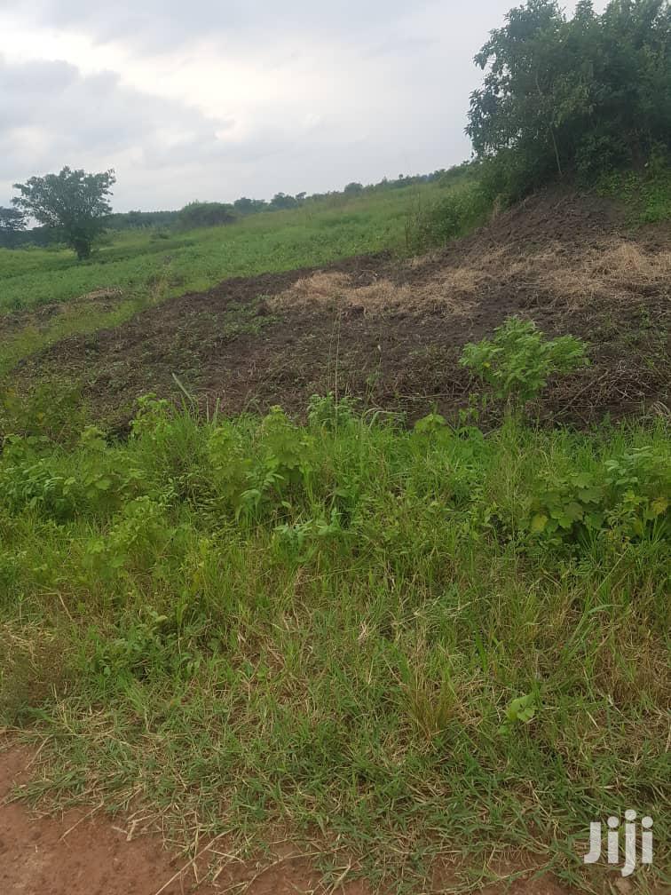 100 Acres Of Very Fertile Farm Land For Rent | Land & Plots for Rent for sale in Kayunga, Central Region, Uganda