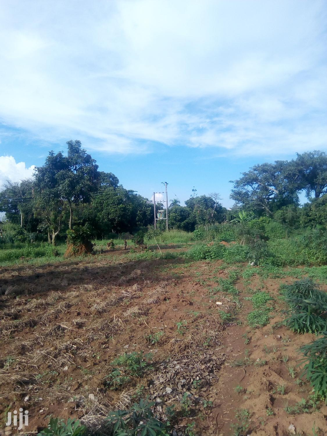 Archive: 50 Acres Of Land For Sale