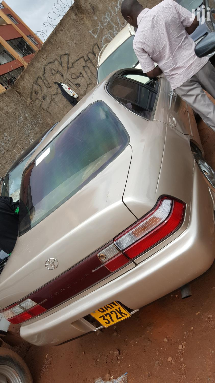 Archive: Toyota Corolla 1995 Beige