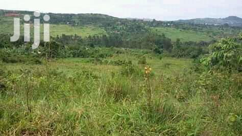 Archive: Kabale Plot for Sale