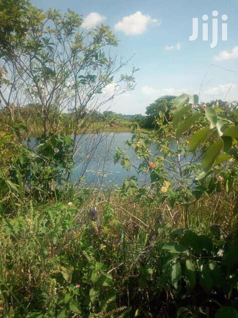 270 Acres Land In Zirobwe Kikyusa Town For Sale | Land & Plots For Sale for sale in Kampala, Central Region, Uganda