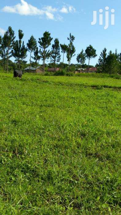 Residential Plots In MUKONO