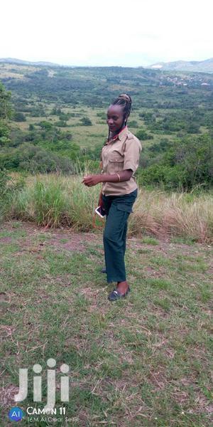 Guider In Fields