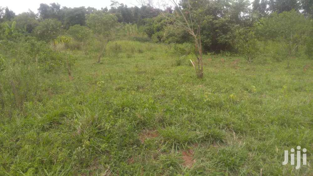 Farmland In Kikyusa Luwero For Sale