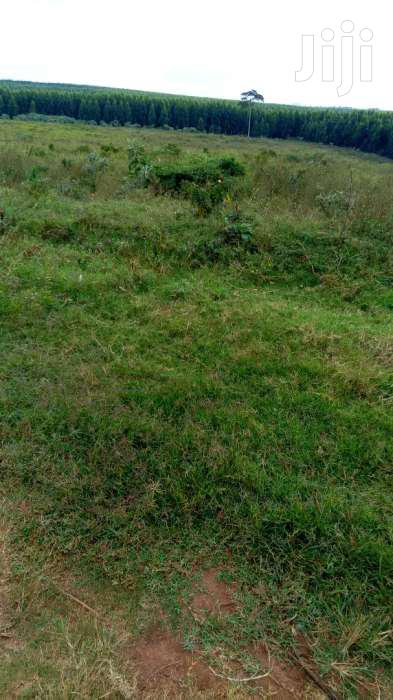 Land In Mukono For Sale | Land & Plots For Sale for sale in Mukono, Central Region, Uganda