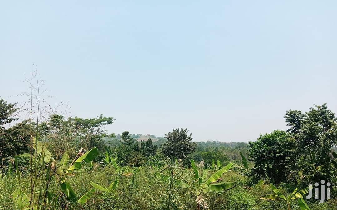 7acres On Sale Mukono Katosi Road At Kisoga   Land & Plots For Sale for sale in Kampala, Central Region, Uganda