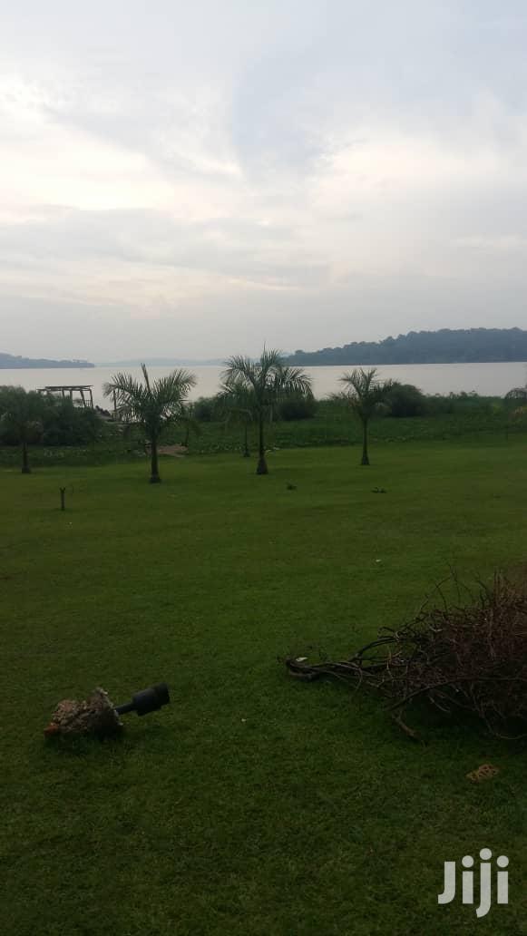 7 Acres Land In Munyonyo Touching Lake Victoria For Sale