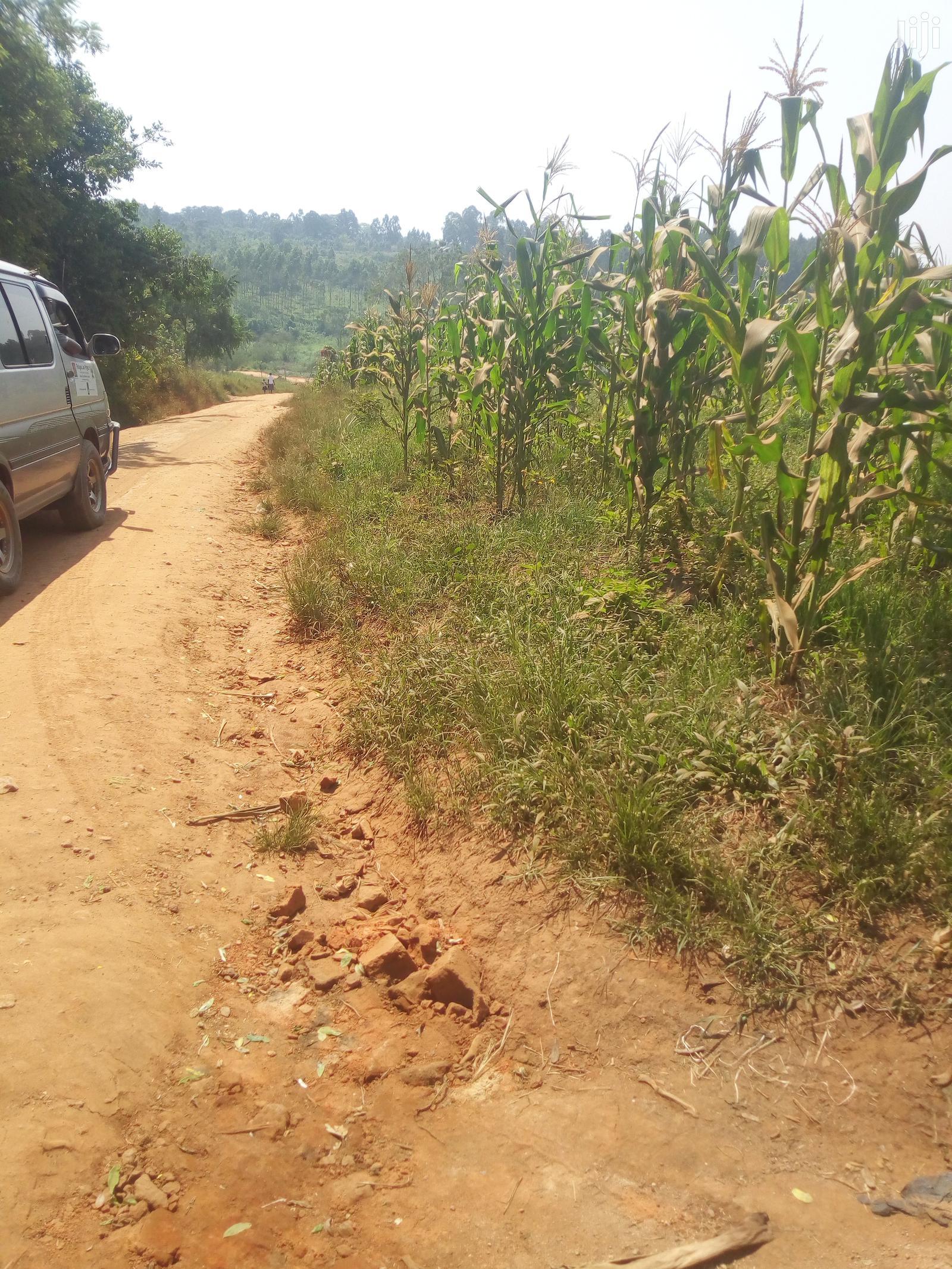 Plots, Gayaza Busiika Road, Kats and Deo Surveys LTD