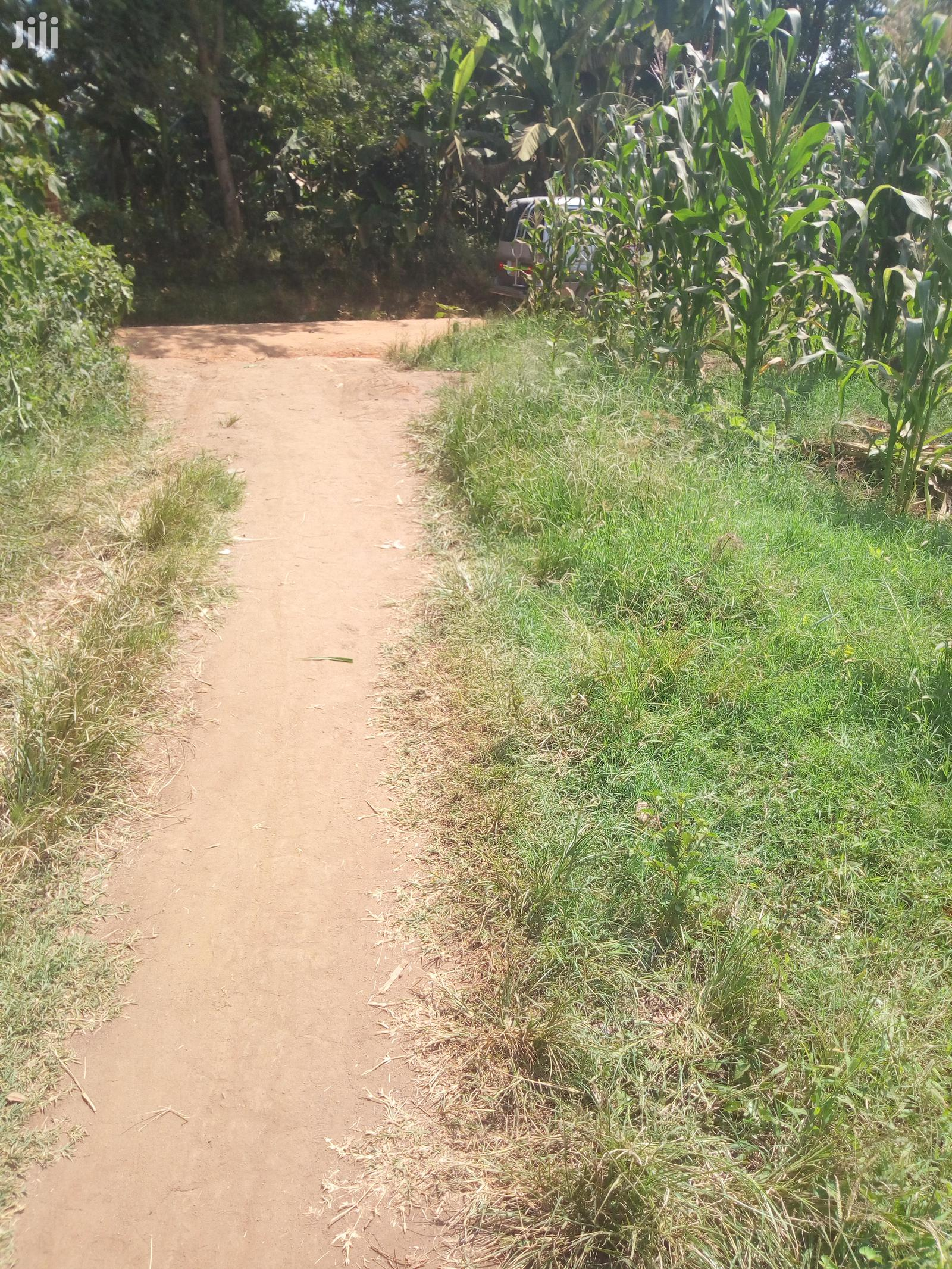 Plots, Gayaza Busiika Road, Kats and Deo Surveys LTD | Land & Plots For Sale for sale in Wakiso, Central Region, Uganda