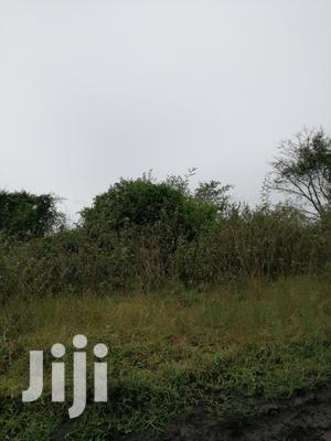 Land In Rakai Kasensero Touching Lake Victoria For Sale