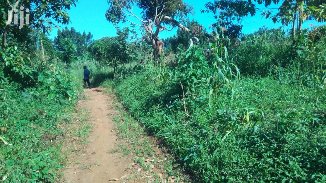 Archive: Land In Mukono For Sale