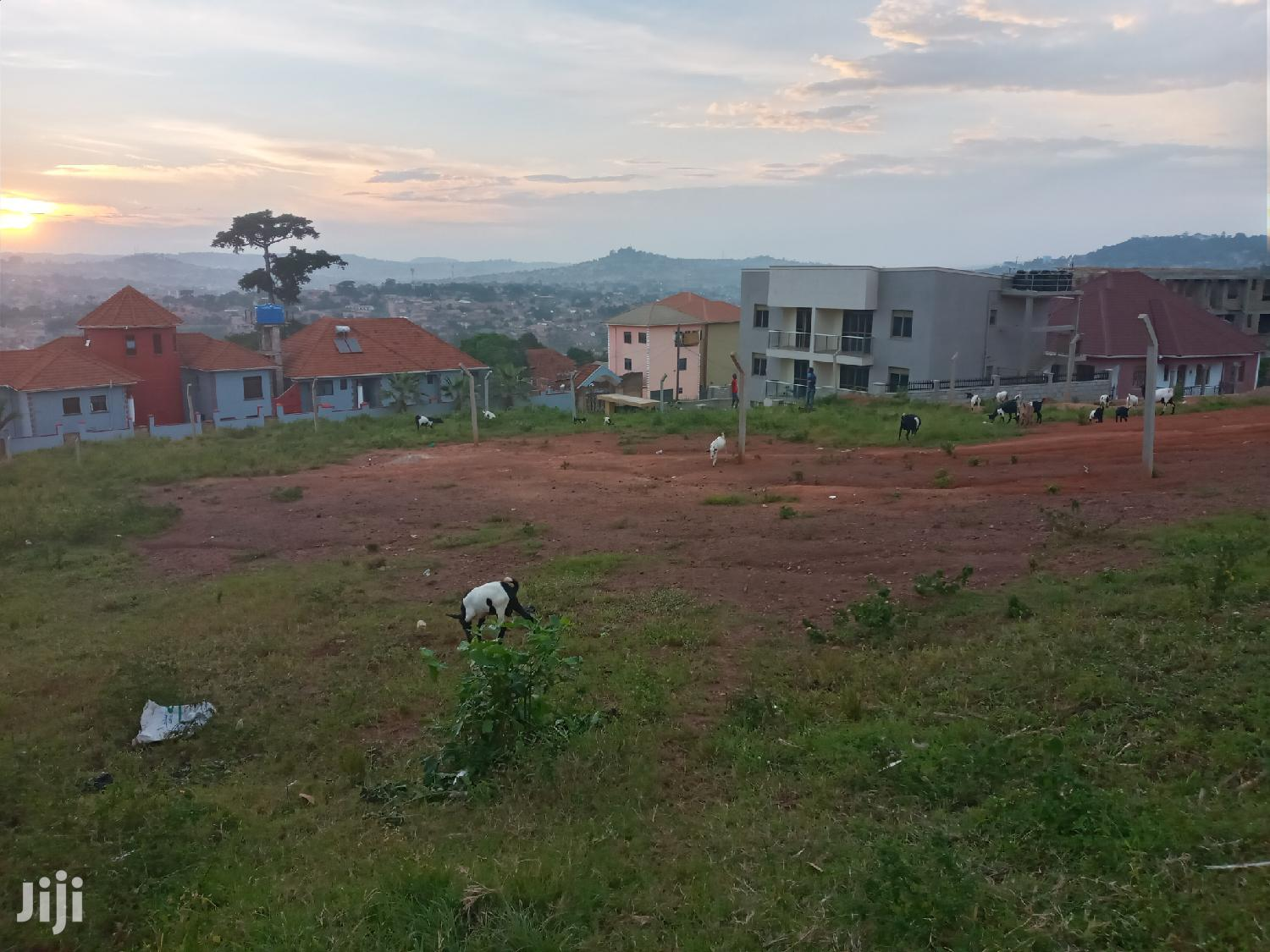 Land In Heart Of Buziga Uphill For Sale
