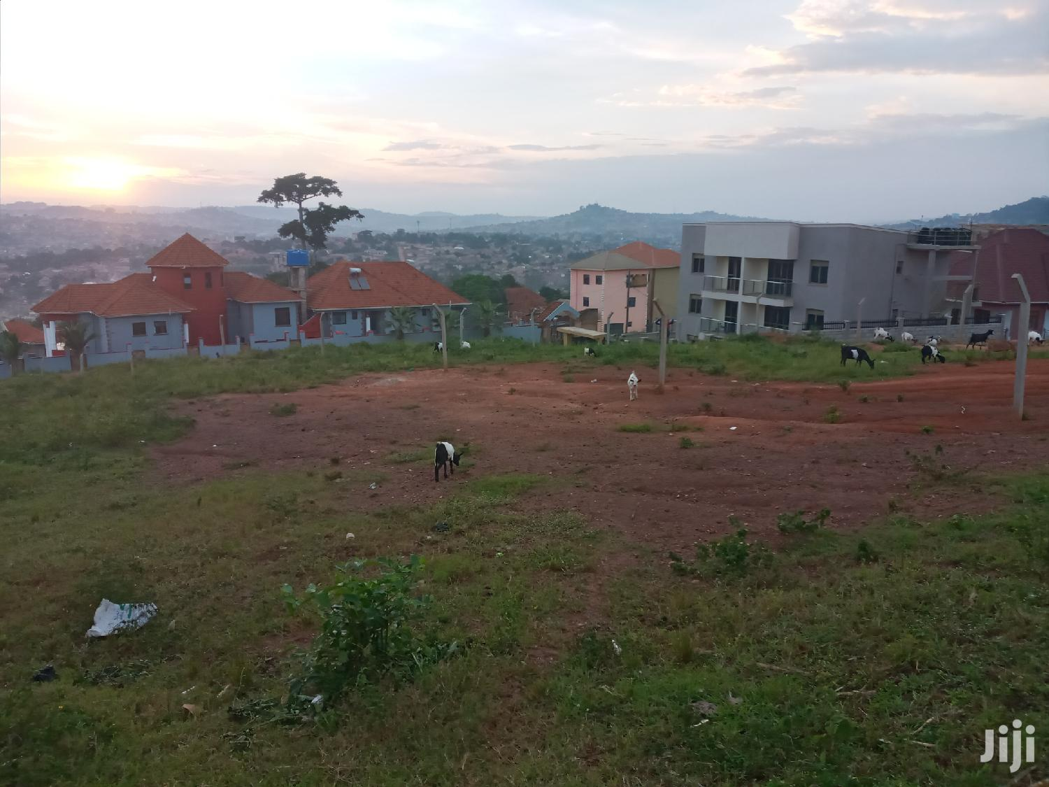 Land In Heart Of Buziga Uphill For Sale | Land & Plots For Sale for sale in Kampala, Central Region, Uganda