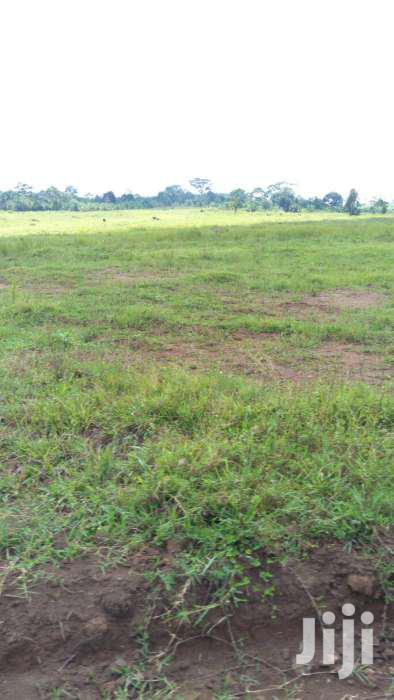 25 Decimals/100ft*100ft In Kisowera-mpoma Off Kayunga Rose At 25millio | Land & Plots For Sale for sale in Mukono, Central Region, Uganda