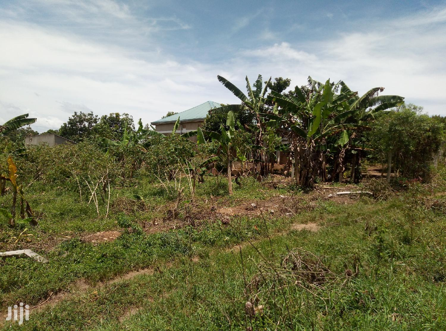 20 Acres Of Land In Zirobwe Town For Sale