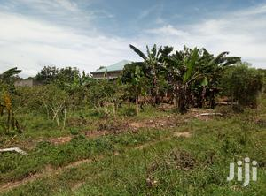 20 Acres Of Land In Zirobwe Town For Sale | Land & Plots For Sale for sale in Central Region, Luweero
