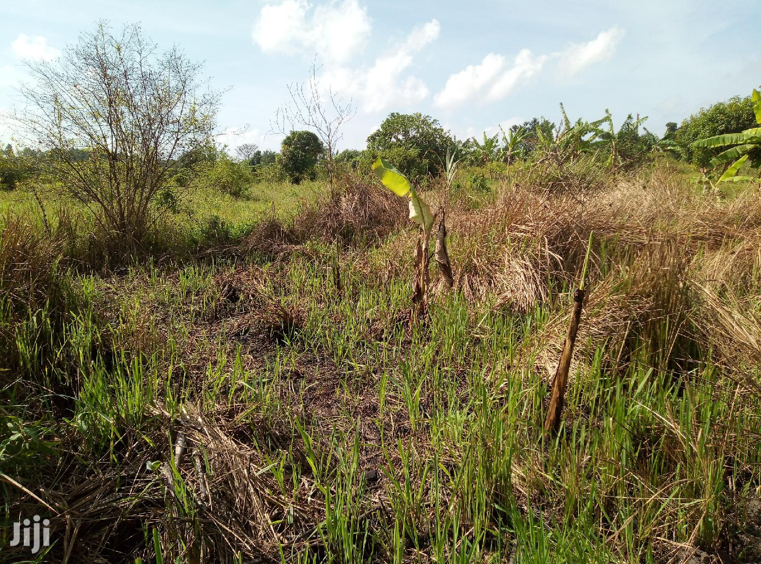20 Acres Of Land In Zirobwe Town For Sale | Land & Plots For Sale for sale in Luweero, Central Region, Uganda